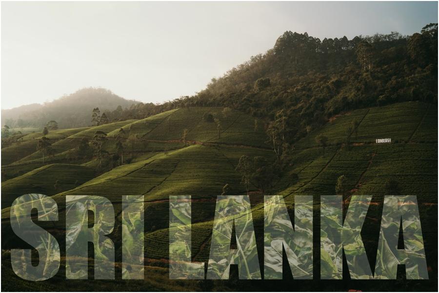 podróż na Srilankę